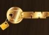 Стальные входные двери со шпоном, массивом, ламинатом - последнее сообщение от Yaguar-m